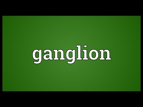 Ganglion Meaning