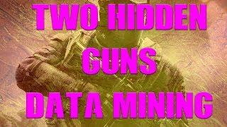 2 NEW GUNS!? | *HIDDEN GUNS* MUSTANG & GAUSS | DATA MINING | CALL OF DUTY INFINITE WARFARE