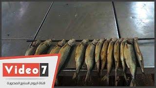 تعرف على أسرار مذهلة لتصنيع «الرنجة» فى مصر