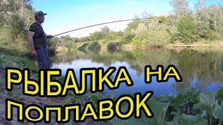 Рыбалка на крупную плотву жена наловила карасей и открыла сезон рыбалки