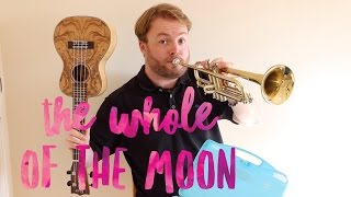 The Whole Of The Moon - The Waterboys (UKULELE TUTORIAL!)