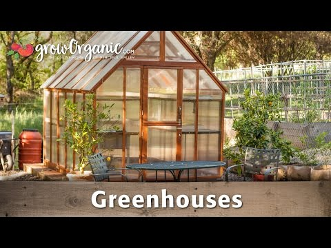 The Beginner's Guide to Greenhouses