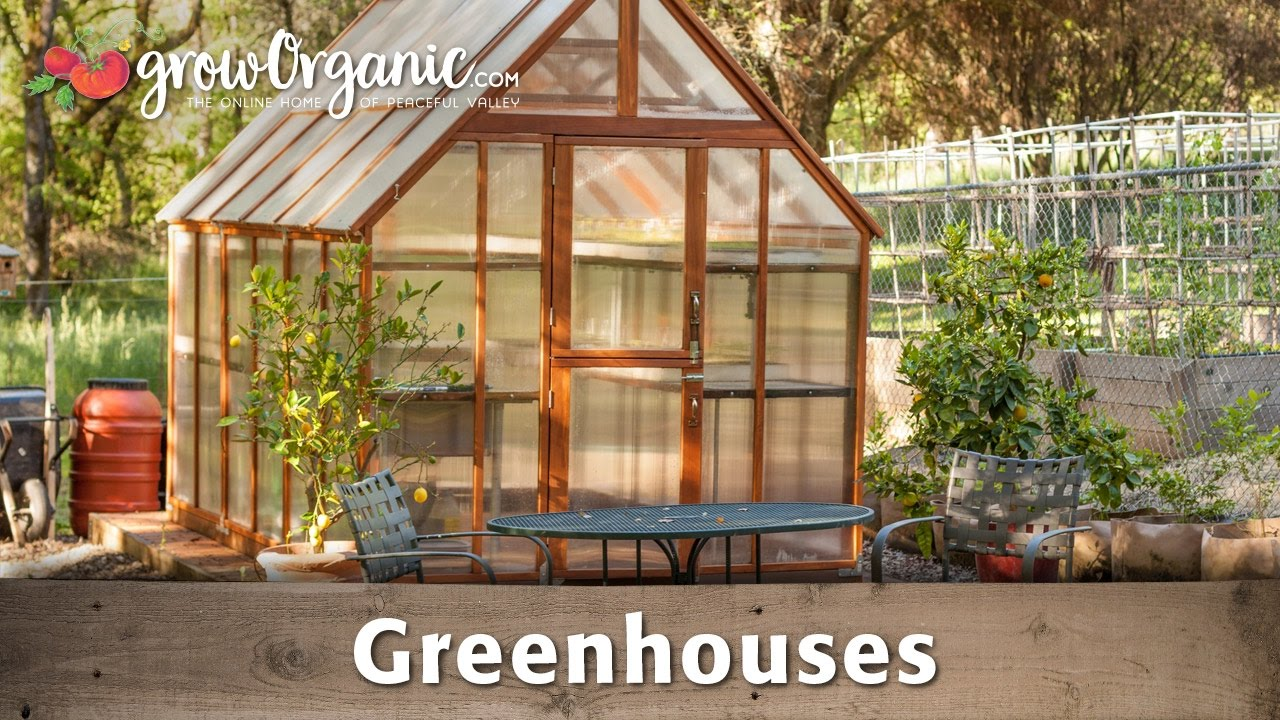 The Beginner S Guide To Greenhouses Youtube