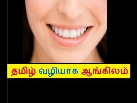 essay on teeth care