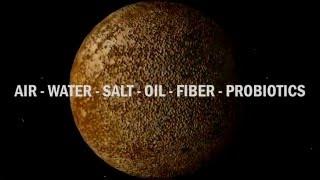 Master Secrets of the Universe For Longevity - FoodBoosters - Master Secrets Of The Universe thumbnail