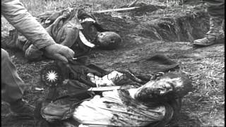Bayonet and bullet wounds on the chests of the corpses taken out by the soldiers ...HD Stock Footage