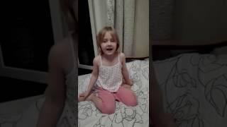 Детский стих про собаку и кошку