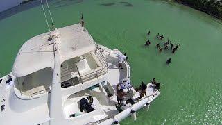 Saona Island Private Catamaran | Punta Cana Yachts