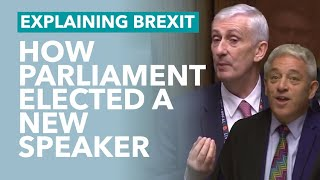Lindsay Hoyle is Elected as the New Speaker - TLDR Explains