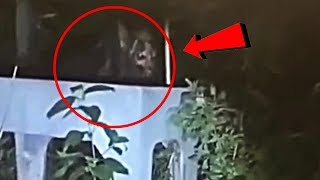 10 Scary Videos That'll Make You DROP Your Phone