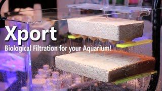 Brightwell Aquatics Xport BRICKS at Reefapalooza!