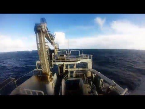 Norwegian fishing vessel big catch