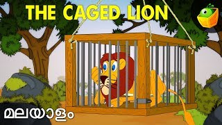 Caged Lion | Hitopadesha Tales In Malayalam | Animation Stories
