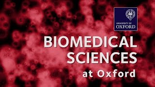 Biomedical Sciences at Oxford University