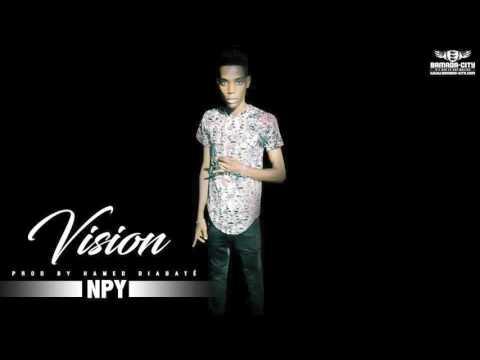 NPY - VISION