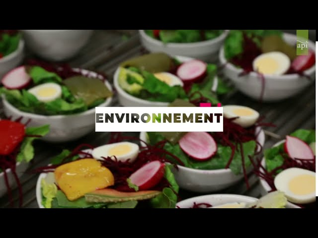 API Restauration finaliste du prix Hainaut Horizons 2020