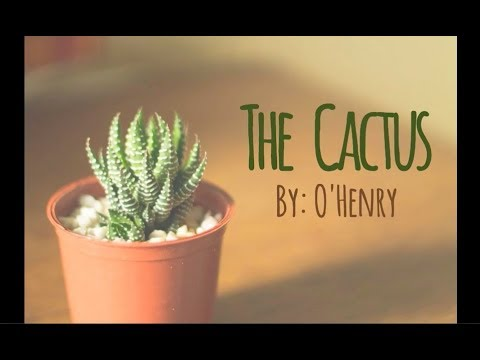 The Cactus (Advanced C2) – Learn American English through Short Stories