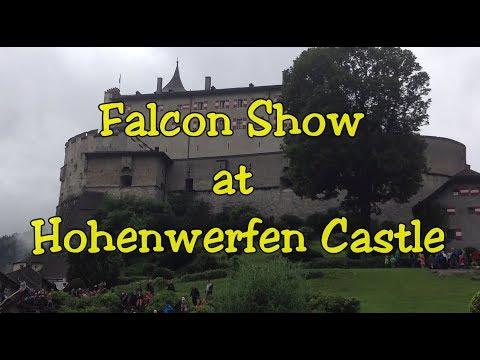 Falcon Show At Hoenwerfen Castle. Austria