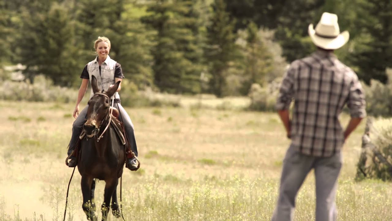 Storm Rider - DVD Image