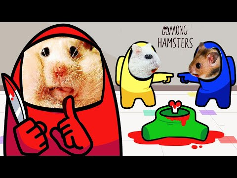 Hamster pets AMONG US but with Traps 🐹😈 Hamster Impostor Among Us in Life Of Pets Hamham |