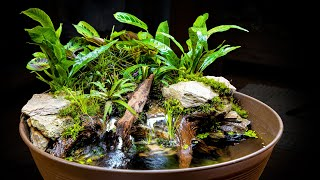 AWESOME Naturalistic Indoor Mini Pond + Giveaway