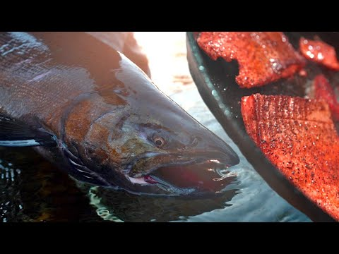 King Salmon Catch And Cook (Seafood Smorgasbord)