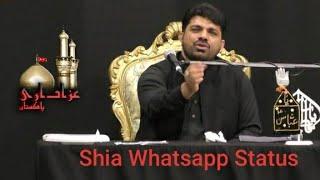 allama asif raza alvi whatsapp status new- shia whatsapp statu…