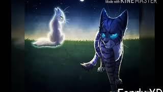 Очень красивые картинки котов воителей