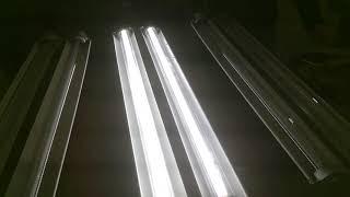 170488 3 X EPL 48 2L LED D V2 PND 56K 2