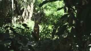 vuclip Piranhaconda  SyFy