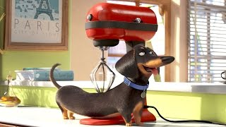 Buddy the Dog - THE SECRET LIFE OF PETS Movie Clip