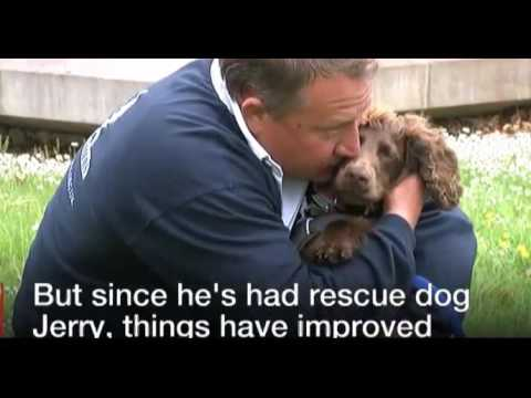Rescue dogs help PTSD veterans reduce anxiety