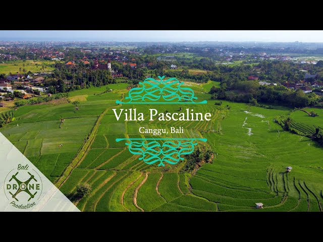 Villa Pascaline - Canggu, Bali 2019