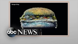 burger-king-latest-marketing-strategy-raises-questions