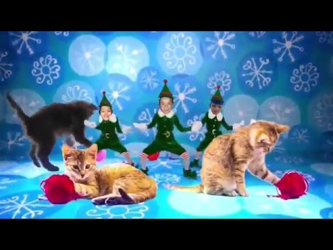 merry christmas elves cats happy new year 2016 hd 1080p