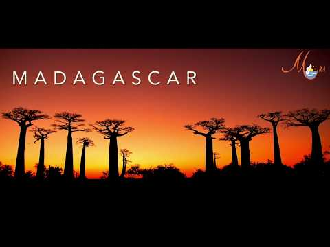 Traveling Madagascar with your family - Mora Travel