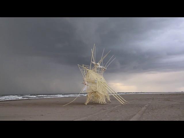 Strandbeest Evolution 2017 - Theo Jansen