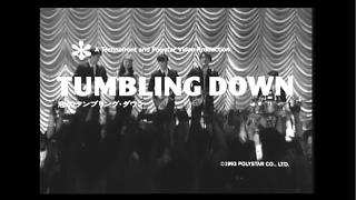 L⇔R - 恋のタンブリング・ダウン