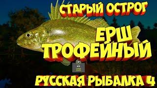 русская рыбалка 4 Ёрш озеро Старый Острог рр4 фарм Алексей Майоров russian fishing 4