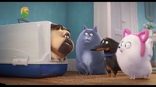The Secret Life Of Pets 2 |  Official Trailer [HD]