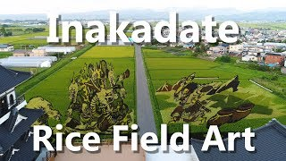 Incredible Rice Field Art in Inakadate Village in Aomori