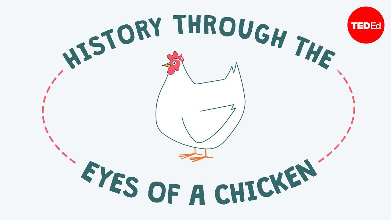 History through the eyes of a chicken - Chris A. Kniesly