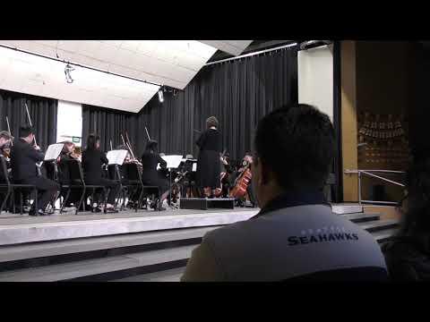 Orchestra Cookie Concert Risdon Middle School 2019   Part 9