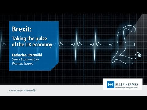 Brexit: Taking the pulse of the UK economy