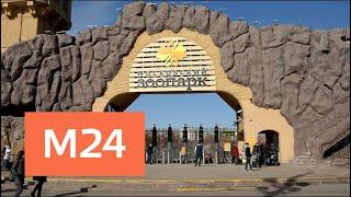 Московский зоопарк переходит на зимний режим работы - Москва 24