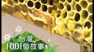 在台灣,用心做食品的業者人稱台灣女王蜂的李麗玉台灣的純蜂蜜有7成以上...