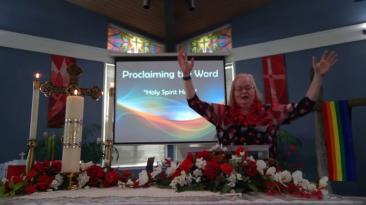 "May 31, 2020 ~ Rev. Julia Price ~ ""Holy Spirit Holes"""