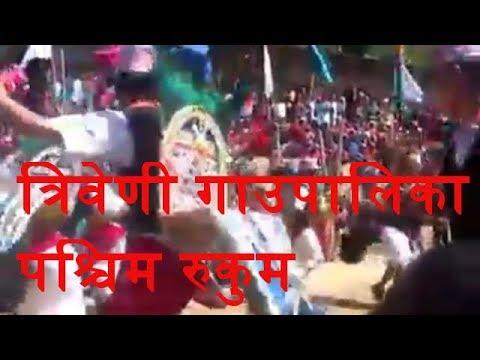 पश्चिम् रुकुम त्रीबेणी गाउँपालिका जिबाङ खारा को लोकप्रिय मयुर नाच By Ramailo Rapti