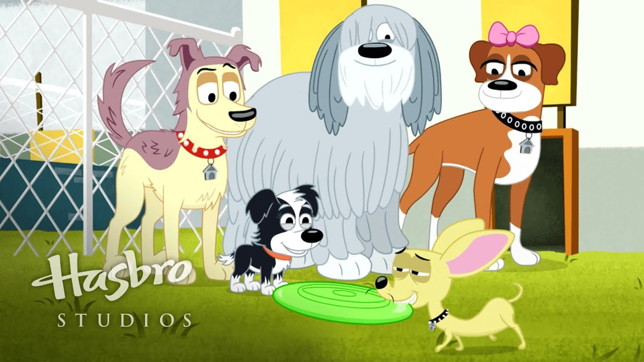 Pound Puppies Be e with the Zoomit
