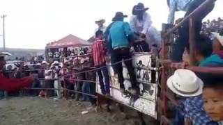 Feria tlaunilolpan hgo 2016